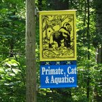 Primate, Cat & Aquatics sign