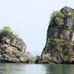 islands around Geoforest Park