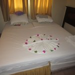 beautfiul flowers on the bed