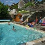 Le figuier_piscine