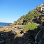 On the coastal walk to the south of Bondi