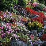 Gardens at Villa Carlotta