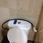 Really?! Is that an indonesian version of a bidet in a 5 stars hotel?