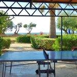 espace tennis de table