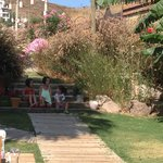 çocuk için çok güzel bir bahçe