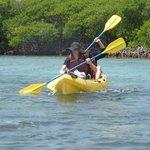 kayaking the mangrove lagoon