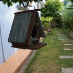 The bird house at the yard
