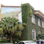 Ivy & Mural