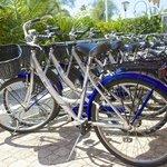Le bici Gratuite