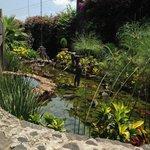 013 - Gardens - Casa Isabella - 20Jul14