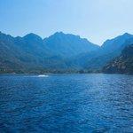 Local Beach - Boat Trip