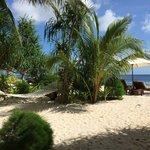 Beach Bungalow Nr. 5 - Garten