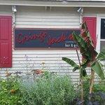 Outside of Gringo Jack's