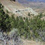 Hiking trail view