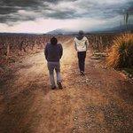 Lujan de Cuyo Wine Tour