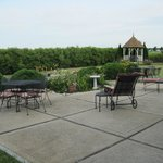 Brightwood Inn-Back Patio & Grounds