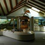 Hall of Dinosaurs