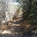 my own path..
