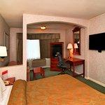 Minisuite 1 Bed