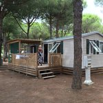 Beautiful 7 person caravan. Well equiped and nicely decorated.
