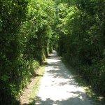 Unknown trail.