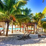 Hammocks and swinging beds between restraurant and beach.