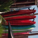 paddle boards at Fenix lounge