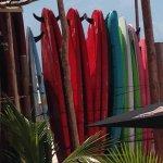 paddle boards at Fenix lounge