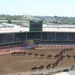 The Opening of the Rodeo