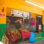 Yunque excursion