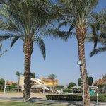 Photo de Caribbean World Resorts Soma Bay