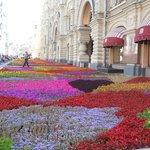 百貨店前の花の絨毯