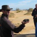 Tour mit Living Desert Adventures (ein Muss)