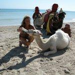 biberon al cammellino