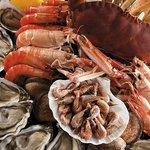 Les fruits de mer très frais