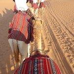 Balade en dromadaire / Camel Tour