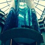 atrium aquarium