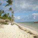 Mandatory beach photo