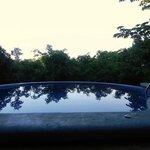 Pool at Manuel Antonio: what a backdrop