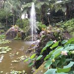 у фонтана, нижний сад