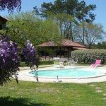 Le Domaine Erleak et la piscine