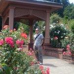 Roe Garden