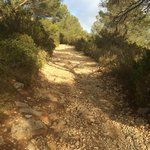 Mountain path, Ibiza