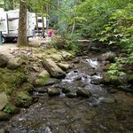 Back of our campsite