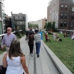 Um dos jardins do High Line Park