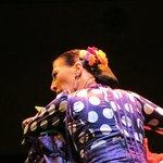 Professional Flamenco