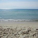 Foto de Rey Beach Club