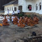 The group of praying monks