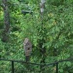 Birdhouse on trail at Vulcan Park