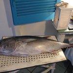 L'arrivo del pesce fresco: tonno,pesce spada e pesce nastro!!!!